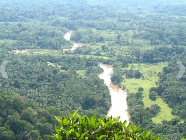 Foto: Parque Nacional da Serra do Divisor