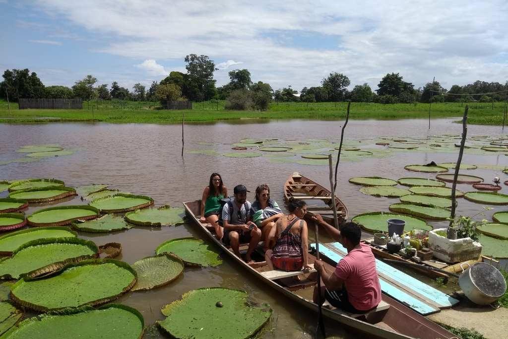 Canal do Jari