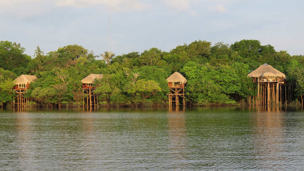 Foto: Juma Amazon Lodge